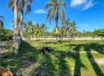 Encuentro land Cabarete Dominican Republic