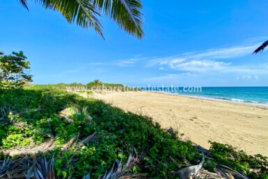 Spectacular beachfront lot Encuentro Cabarete Dominican Republic close to kitebeach