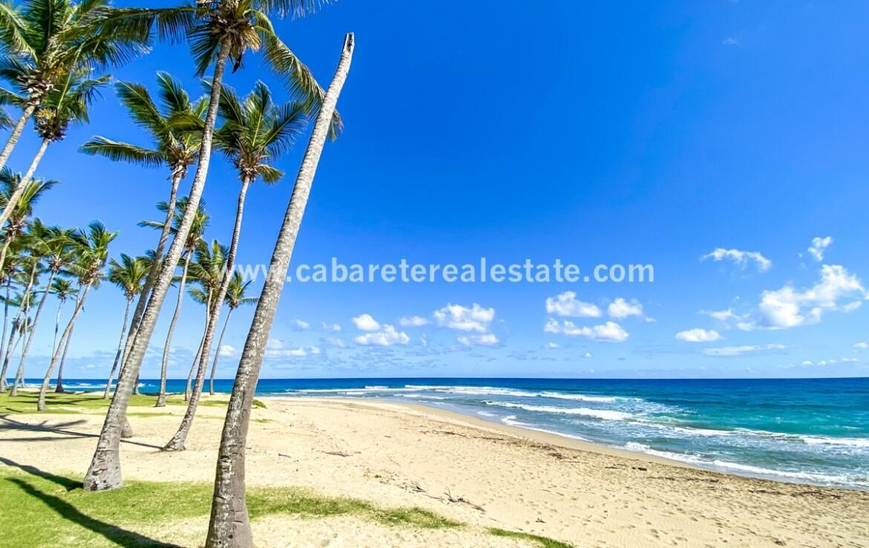 Encuentro beach front land Cabarete Dominican Republic 1