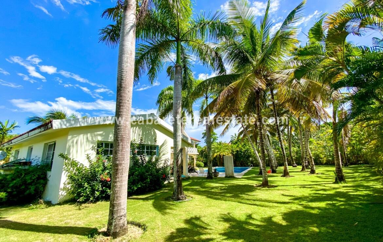 landscape yard lawn guest house guesthouse ocean beach pool cabarete dominican republic land